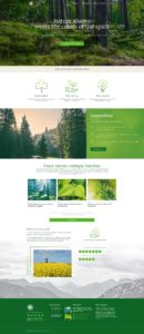Web Design Salt Lake City, SEO Utah | Digital Bright Sun